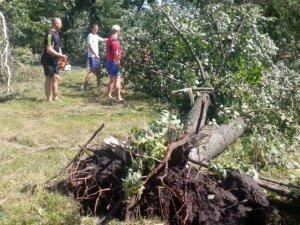 Фото: На Полтавщині буревій знеструмив 43 населених пункти та завалив дерева