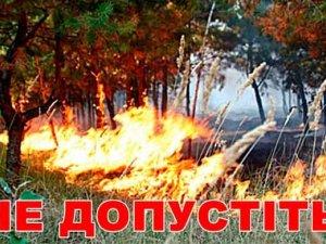 Фото: Лісівники просять полтавців утриматися від відвідування лісу