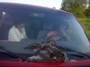 Фото: Нетверезий полтавський чиновник у самих трусах спочатку ледь не переїхав двох жінок на своєму авто, а потім побив їх (фото, відео)
