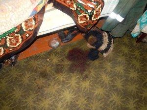 Фото: На Полтавщині син убив батька