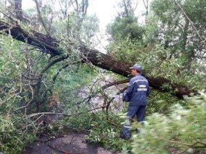Фото: На Полтавщині негода застала ще 5 районів: про наслідки