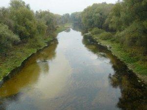 Через негоду у Лубнах зійшла вода зі ставків: люди на полях збирали рибу
