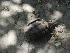 Фото: На Полтавщині жінка знайшла у себе на городі гранату