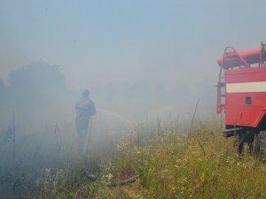 Фото: Жителів Полтавщини попередили про найвищий рівень пожежної небезпеки