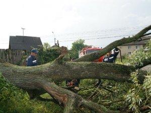 Фото: Кілька районів Полтавщини постраждали від негоди