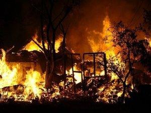 Фото: У Полтаві подружжя пенсіонерів згоріли у будинку