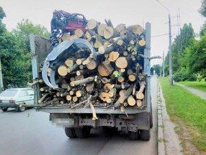 Фото: У Полтаві зупинили вантажівку із незаконною деревиною