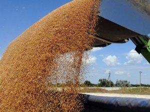 Фото: Аграрії Полтавщини намолотили перший мільйон ранніх зернових