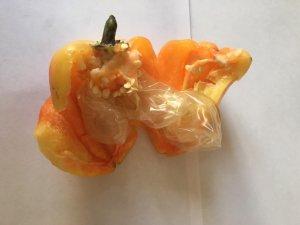 Фото: Наркотики у овочах та презервативах намагались передати ув'язненим на Полтавщині (ФОТО)