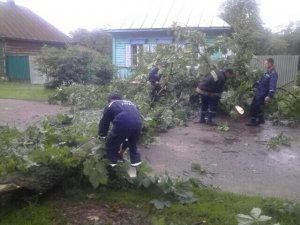 Фото: Другий день негоди на Полтавщині: повалені стовпи й дерева, затоплені будинки, райони без світла