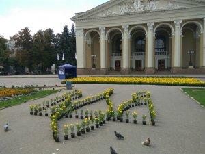 Фото: В центрі Полтави склали великий прапор України з петуній і чорнобривців
