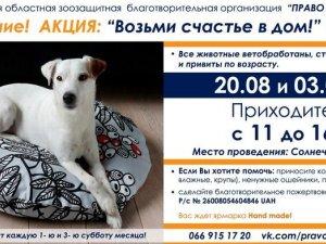 Фото: У полтавському парку безкоштовно роздаватимуть тварин