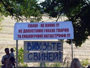 Майдан проти свинокомплексу у Біликах стоїть уже місяць (ФОТО, ВІДЕО)